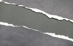 Torn paper with grey copyspace Stock Image