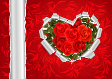 Torn paper heart with red roses Stock Photo