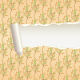 Torn paper ornament band 2 Royalty Free Stock Photography