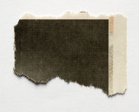 Torn paper. Piece of torn paper on plain background stock photography
