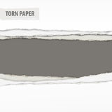 Torn paper pieces on grey Stock Photos