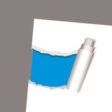Torn paper reveal curl. White paper background with blue inset and torn edges Royalty Free Stock Images