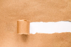 Torn paper with space for text with white background. Stock Images