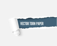Torn paper with space for your message, realistic  illustration Stock Photos