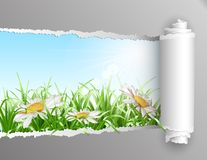 Torn paper with summer background. Stock Photo