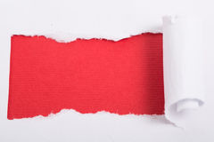 Torn paper. For your add texture inside stock photography
