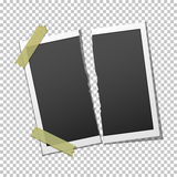 Torn photo frame on transparent background Royalty Free Stock Photos