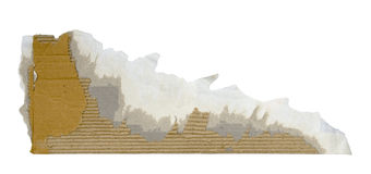 Torn piece of cardboard Stock Image