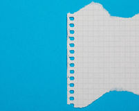 Torn piece of checkered paper. On blue background Royalty Free Stock Image