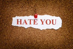 Torn piece of paper with phrase Hate you Stock Photo