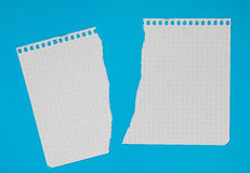 Torn pieces of checkered paper Royalty Free Stock Images