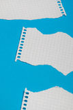 Torn pieces of checkered paper. On blue background Stock Photography