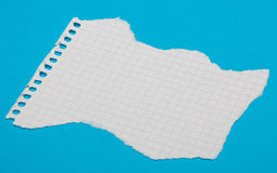Torn pieces of checkered paper Royalty Free Stock Image