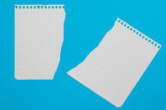 Torn pieces of checkered paper Stock Photography