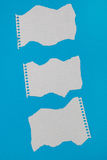 Torn pieces of checkered paper. On blue background Royalty Free Stock Photos