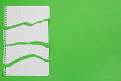 Torn pieces of checkered paper. On green background Stock Image