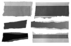 Torn pieces of paper. Six pieces of torn paper on plain background stock image