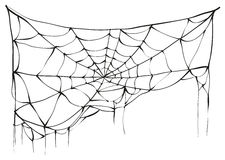 Torn spider web on white background Royalty Free Stock Photo