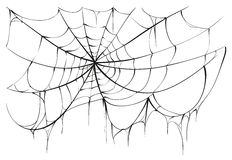 Torn spider web on white background. Vector illustration Royalty Free Stock Image