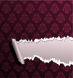 Torn wallpaper Royalty Free Stock Photos