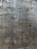 Torn wooden background Stock Photo