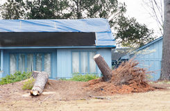 Tornado Damaged House with Tree Damage in Yard Stock Photo