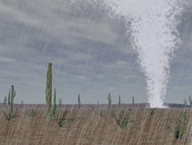 Tornado in der Wüste Stockbilder