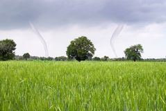 Tornado and field Royalty Free Stock Photography