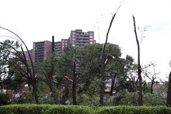 Tornado Hits New York City on  SEPTEMBER 16, 2010 Stock Image