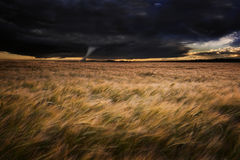 Tornado twister over fields in Summer storm Stock Images