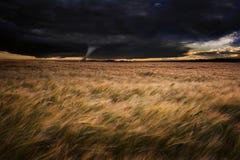 Tornado twister over fields in Summer storm