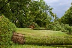 Tornado w mieście Minsk, republika Białoruś 13 07 2016 Zdjęcie Stock