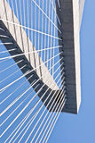 TornCooperfloden kabel-blir bron arkivbild