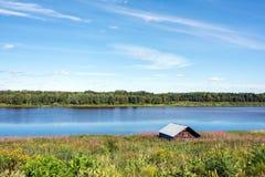 Torne rzeczna dolina, Szwecja Obraz Stock