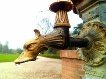 Torneira da fonte com uma forma da cabeça do dragão no parque imagens de stock royalty free
