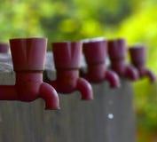 Torneira de água com a fotografia do fundo natural Imagens de Stock