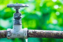 Torneira de água no jardim Foto de Stock