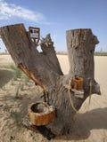 Torneira de água original no meio do deserto imagens de stock