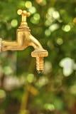 Torneira de gotejamento Foto de Stock