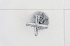 Torneira do chuveiro no banheiro Imagem de Stock