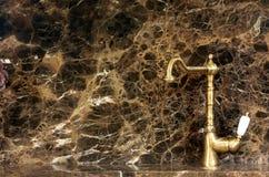 Torneira dourada da cozinha Fotos de Stock