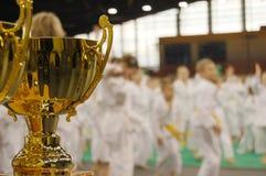 Torneo del karate Fotografía de archivo libre de regalías