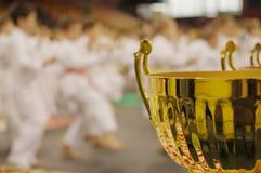 Torneo del karate Fotos de archivo libres de regalías