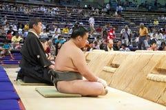 Torneo del sumo Foto de archivo libre de regalías