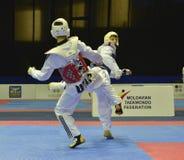 Torneo del wtf del Taekwondo fotos de archivo