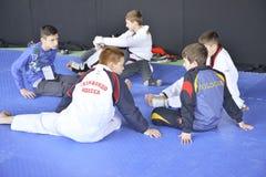 Torneo del wtf del Taekwondo Imagen de archivo