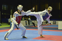 Torneo del wtf del Taekwondo imágenes de archivo libres de regalías