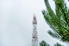 Tornet för den mobila kommunikationen på bakgrunden av molnet av himmel och naturen, idén av lag av naturen, sörjer filialen royaltyfri fotografi
