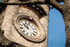 Tornet för Horniman museumklocka Arkivfoto