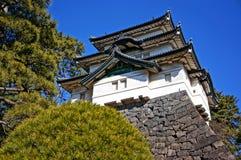 Tornet i imperialistisk slott Arkivbild